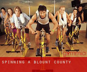 Spinning a Blount County