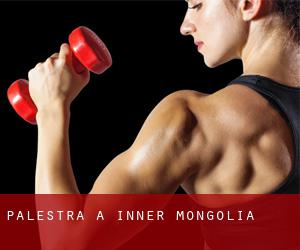 palestra a Inner Mongolia